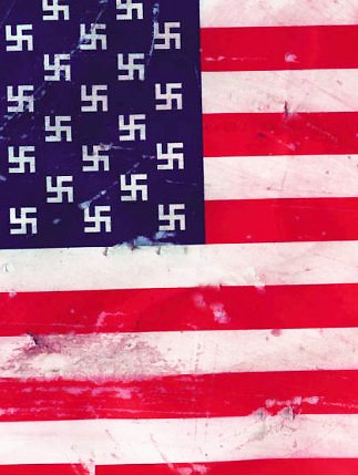 http://www.combatreform.org/nazistatesofamerica.jpg